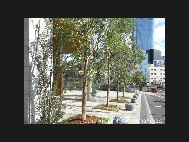 マジェスタワー六本木の植栽